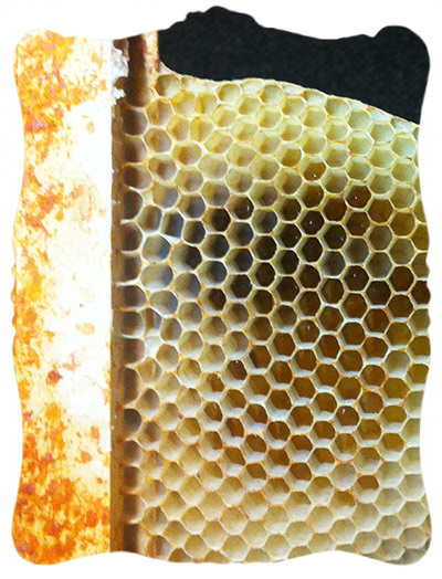 natural honeycomb and propolis