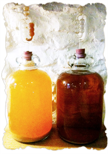 brewing-demijohns.jpg