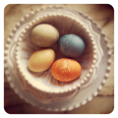 plant-dyed easter eggs