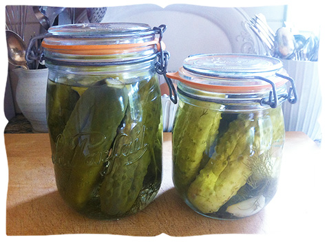 pickled pickles