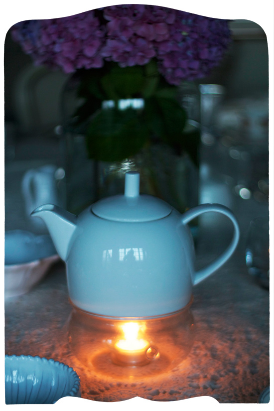 tea warmer © elisa rathje 2011