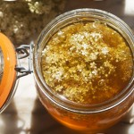 elderflower honey © elisa rathje 2011