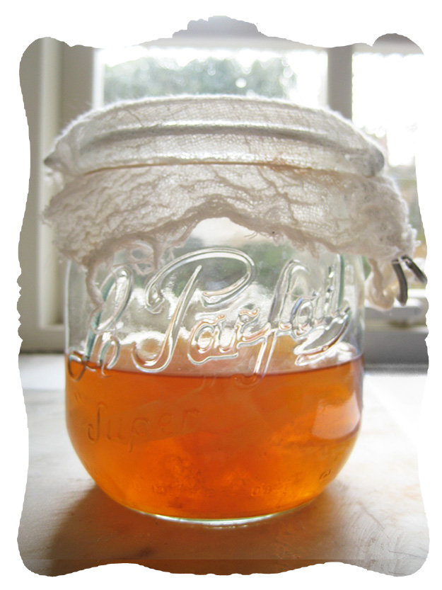 apple cider vinegar © elisa rathje 2012