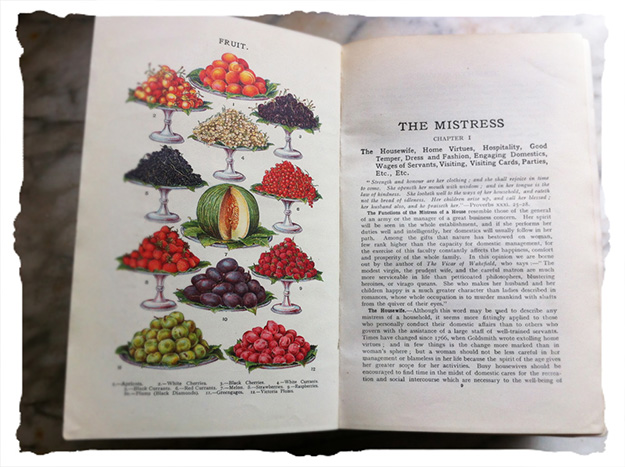 mrs-beeton's-fruit