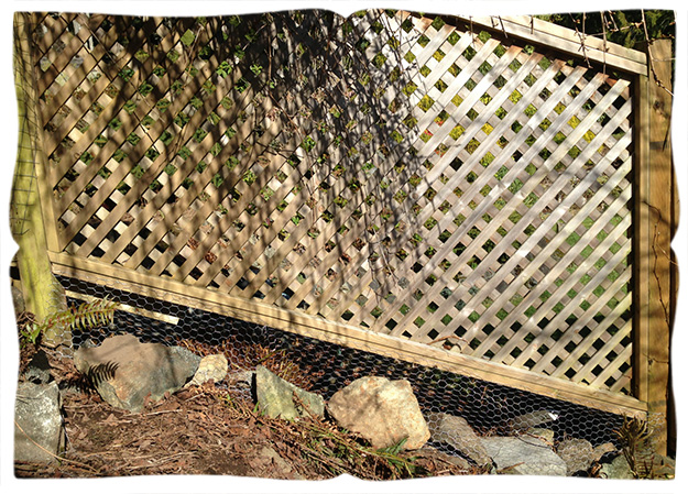 apron fence, after.